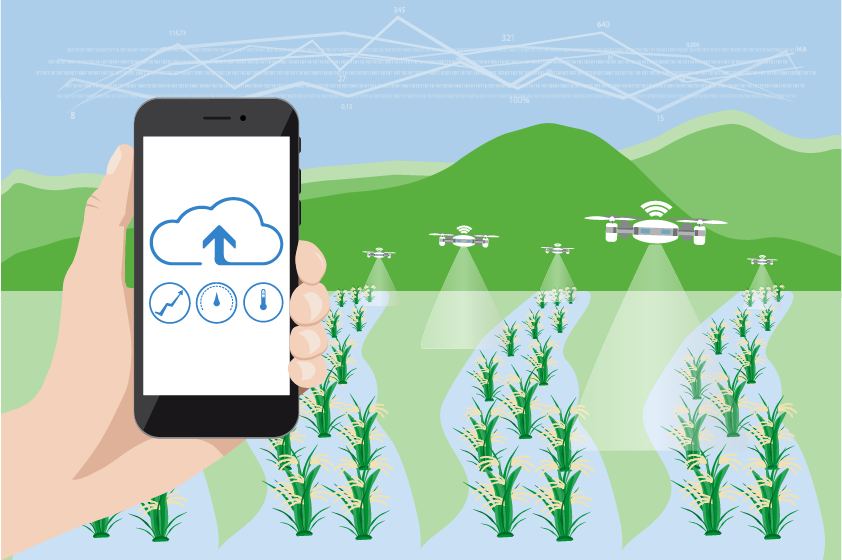 5Gで農業が産業になる日|スマート農業が日本の農家を変える